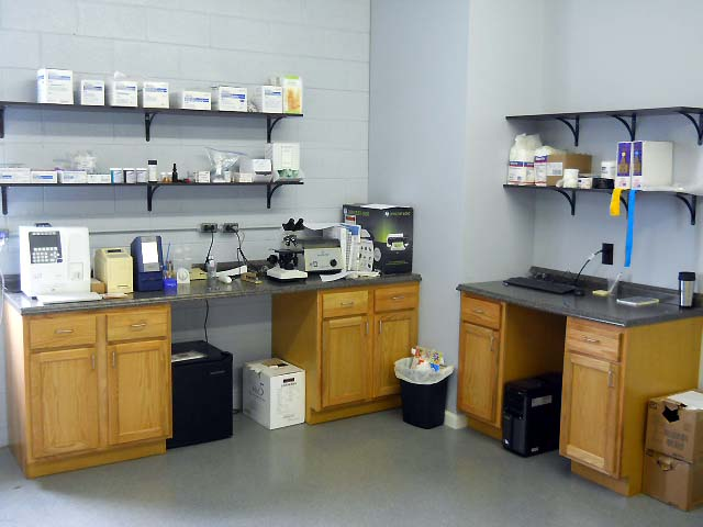 Our laboratory. We offer many tests